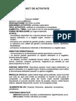 PROIECT DE ACTIVITATE1