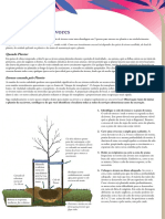 Plantio de Arvores.pdf