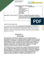 Guia_de_instruct_Act_Ndeg11__Grad_11_Ecosistema.docx
