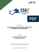 Aplicabilidade das Principais Vertentes e Ferramentas da Ergonomia.pdf