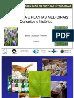 saude-campinas-sp-gov-br_Fitoterapia-e-Planras-Medicinais-Conceitos-e-Historico_Curso_PICS_Eloisa-Pimentel_11-08-2016