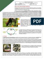 1ro ATLAS - CLASE AGO 07.pdf