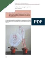Guia_practica_de_propagaci_n_y_cultivo_de_las_especies_del_genero_Echeveria-21-40