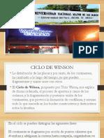 CICLO DE WILSON 9V