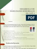 DESARROLLO DE HABILIDADES SENSORIALES DE CAFÉ 4