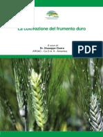 La-coltivazione-del-frumento-duro-_ARSAC