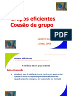 Grupos Eficientes e Coesao de Grupo