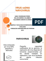 virusssdnaparvovirus-140410192049-phpapp01