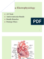 Normal Cardiac Electrophysiology Review_1
