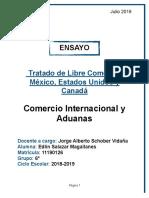 ENSAYO TLCAN PDF.pdf