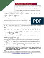 293748880-Circular.pdf