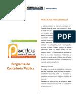 Estructura Metodologica Practicas Profesionales COPD (1).pdf
