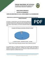 Resultados Parciales Encuestas-TUPAC_COLONIZACION_20-03-19