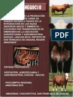 PROYECTOR DE INVERSION - MEJORAMIENTO DE LA PRODUCCION Y PRODUCTIVIDAD DE CARNE DE GANDO VACUNO