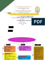 ORGANIZADOR DE DERECHOS- DEBERES-LIBERTADES Y DERECHOS.docx