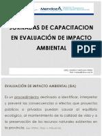 E.I.A..pdf