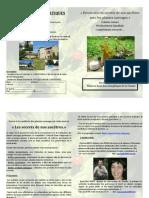plantes_lorier 2011