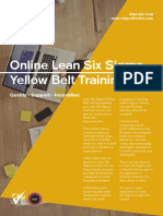 Brochure-LSS-Yellow-Belt-Online