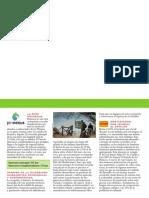 guia-bici-Pirinexus.pdf