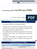 25 Introduccion a las NIIF para PYMES ex final