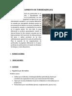 TALLER PERFO -ATASCAMIENTO DE TUBERÍAS-