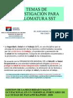 TEMAS DE INVESTIGACIÓN PARA DIPLOMATURA SST - copia