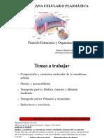 TRANSPORTE CELULAR y MEMBRANA
