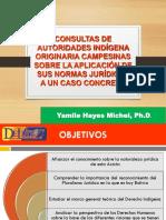 CONSULTAS DE AUTORIDADES INDIGENAS AGOSTO 2020.pdf