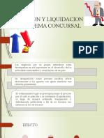 DISOLUCION Y LIQUIDACION EN EL SISTEMA CONCURSAL