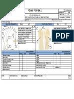 PIC.PE-EHS-25_Check List Inspección tierra temperal y guantes dielectricos