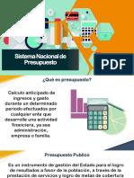 02 Sistema Nacional de Presupuesto