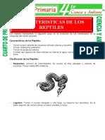 Caracteristicas-de-Los-Reptiles-para-Cuarto-de-Primaria