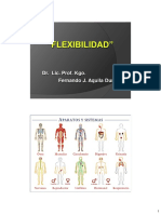 Kinefilaxia - Flexibilidad