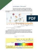 Tema 3 - Técnicas Microbiologicas