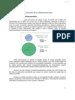 Tema 2 Estructuras y función de la Célula Procariota