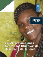 undp-co-odmafrocolombianos-2012.pdf