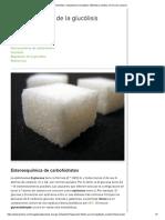 Glucólisis_ metabolismo energético _ Biblioteca médica en línea de Lecturio