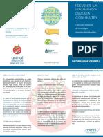 Triptico_informacion_basica sin tacc.pdf