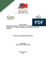 Procompite PLan de comercializacion (1)