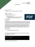 Practica dhcp linux saul