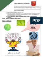 Guía 6 Ciencias Consuelo