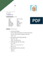 Resume Neteza