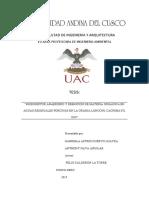 """""""BIODIGESTOR ANAEROBIO Y REMOCIÓN DE MATERIA ORGÁNICA EN AGUAS RESIDUALES PORCINAS EN LA GRANJA LONCONI, CACHIMAYO, 2019"""""""