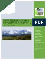 informe ecologia edit.docx