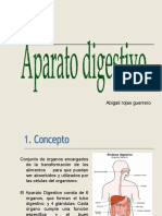 sistema-digestivo..semiologia