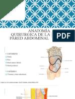 anatomia pared abdominal.pptx