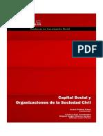 Capital Social y Organizaciones de La Sociedad Civil