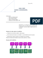 CASO PERÚ 2.0-fer.docx