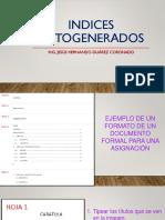 Clase 14 - Indices Autogenerados.pdf