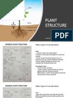 PLANT STRUCTURE (2)